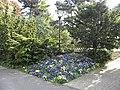 Square Saint Roch (printemps 2009) - panoramio - Eric Bajart.jpg