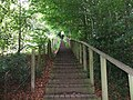 Stairway to The Eildons - geograph.org.uk - 1407788.jpg