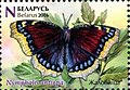 Stamp of Belarus - 2016 - Colnect 651854 - Camberwell Beauty Nymphalis antiopa.jpeg