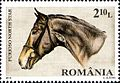 Stamps of Romania, 2010-37.jpg
