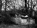 Stary domek - panoramio.jpg