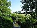 Steenwerck rando du pont de pierre (3).jpg
