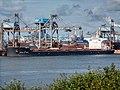 Stella Nora (ship, 2016) IMO 9750983 EECV Calandkanaal pic6.jpg