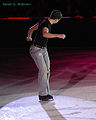 Stephen Carriere 2007 Ice Chips.jpg