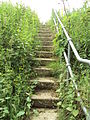 Steps from Shropshire Union Canal towpath to A5117 road, Cheshire - DSC06338.JPG