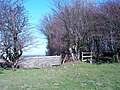 Stile and horse jump - geograph.org.uk - 365594.jpg