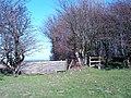 Stile and horse jump - geograph.org.uk - 365594.jpg