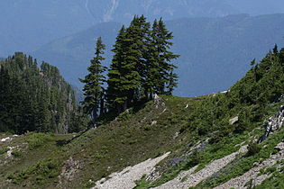 Stillaguamish Peak 5553.JPG
