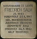 Stumbling block for Friedrich Salm (Bayardsgasse 22)