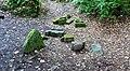 Stones from Lady Kennedy's Bath, Glasslaw Burn, Dunnottar, Aberdeenshire.jpg