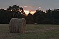 Straw bales at sunset - panoramio.jpg