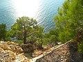 Sunny landscape.jpg