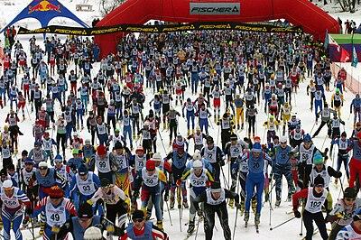 Беговые лыжи Википедия Мировой рынок беговых лыж править править код