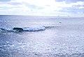 Surf watch.jpg