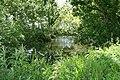 Swimbridge, pond - geograph.org.uk - 441958.jpg