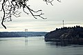 Tacoma Narrows Bridge from Point Defiance Park.jpg
