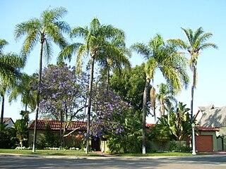 Talmadge, San Diego