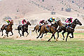 Tambo valley races 2006 edit.jpg