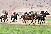 Tambo Valley Picnic Races, Victoria, Australia 2006