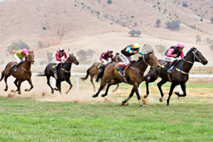 2006 Tambo Valley Races, Swifts Creek, Victoria, Australia
