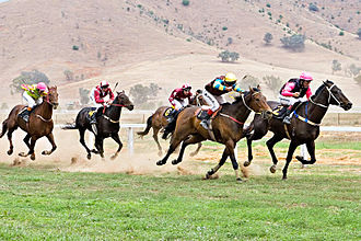 Racing Victoria - The Swifts Creek Cup at the Tambo Valley Picnic Races, 2006