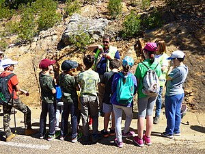 Teaching and learning paleontology to children.jpg