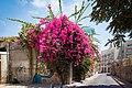 Tel Aviv-Yafo 20140806-IMG 0052.jpg