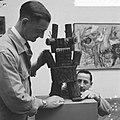 Tentoonstelling werken van Karel Appel in Stedelijk Museum , houten poppetje van, Bestanddeelnr 917-8993.jpg