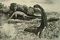 The American Museum journal (c1900-(1918)) (18133076256).jpg