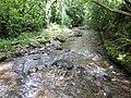 The Dulas Brook, downstream towards Hay - geograph.org.uk - 471138.jpg