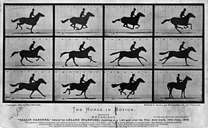 Scientific method - Muybridge's photographs of The Horse in Motion, 1878, were used to answer the question whether all four feet of a galloping horse are ever off the ground at the same time. This demonstrates a use of photography as an experimental tool in science.