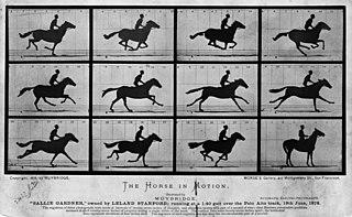 1878 early animated image made by Eadweard Muybridge
