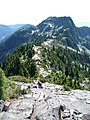 The Lions Ridge.JPG