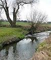 The Smestow Brook at Trescott, Staffordshire - geograph.org.uk - 1129818.jpg
