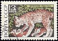 The Soviet Union 1969 CPA 3797 stamp (Lynx) cancelled.jpg