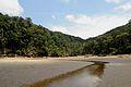 The rainforest from T. Tanjor beach - Bako National Park - Sarawak - Borneo - Malaysia - panoramio.jpg