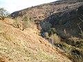 The valley of the Afon y Dolau Gwynion - geograph.org.uk - 1263578.jpg