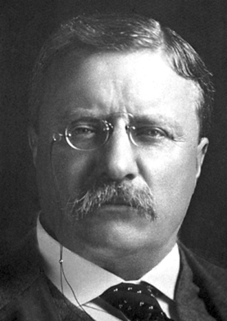 United States presidential election in Nevada, 1904 - Image: Theodore Roosevelt (Nobel 1906)