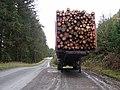 Timber Harvest - geograph.org.uk - 288717.jpg