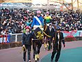 Tokyo Daishoten Day at Oi racecourse (31615626290).jpg