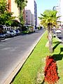 Torrejón de Ardoz 05.jpg
