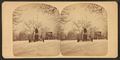 Touro Park in winter, by Joshua Appleby Williams 2.png