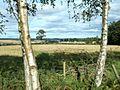 Towards Belhie Farm - geograph.org.uk - 560527.jpg