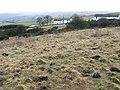 Towards Redmoor Farm - geograph.org.uk - 1134801.jpg
