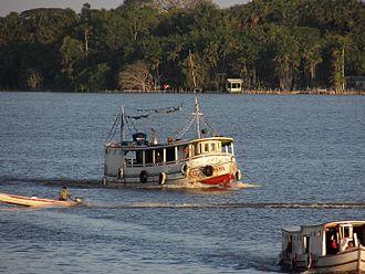 Marajó várzea - River traffic in the fluvial zone