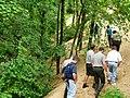 Trail P6220027.jpg