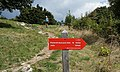 "Trail blaze of Footpath on ""Pot Miru"" of Mount Colovrat to Mount Jeza (949 m), Slovenia.jpg"