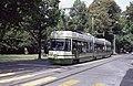 Trams de Berne (Suisse) (5634139480).jpg