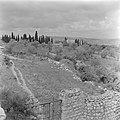 Tuin met ommuring en metalen hek op de Taborberg in Galilea met bomen en met rec, Bestanddeelnr 255-0928.jpg