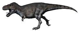 T- rex pierdere în greutate, Câtă greutate poate pierde în lună